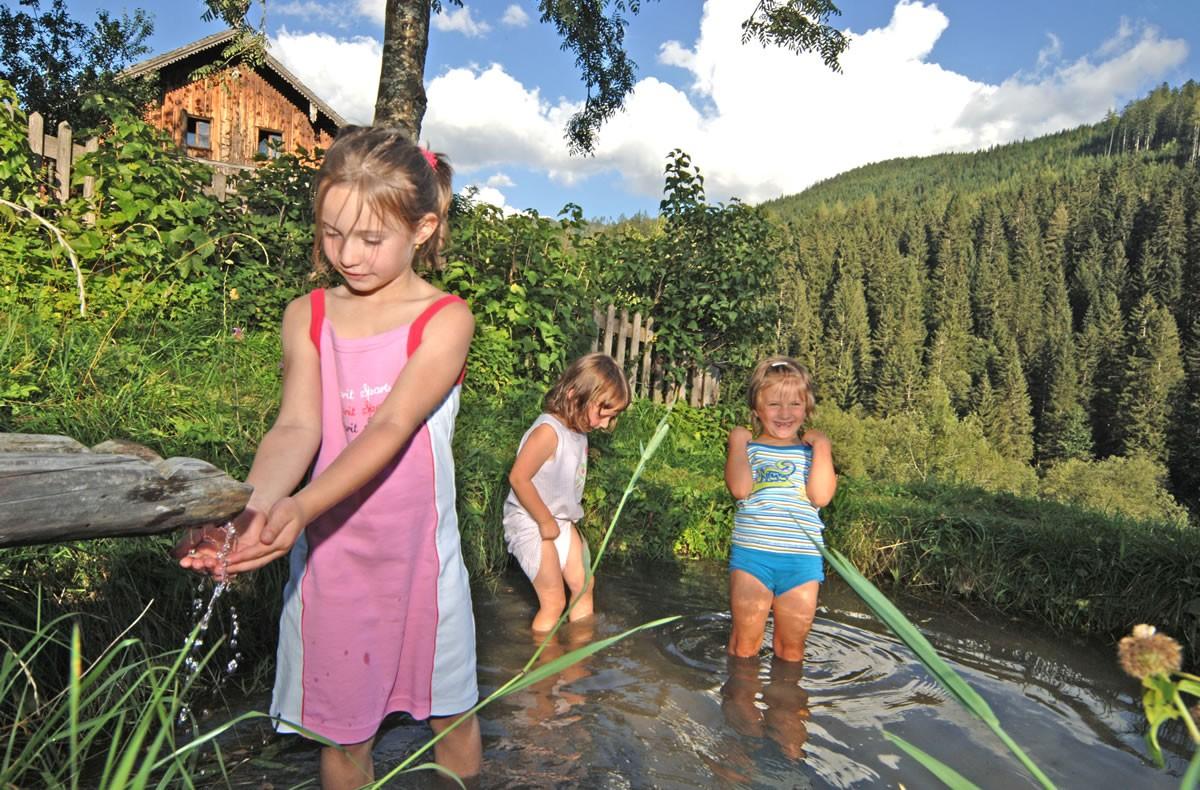Urlaub f r familien mit kindern stubenrauschhof filzmoos for Naturteich zum schwimmen